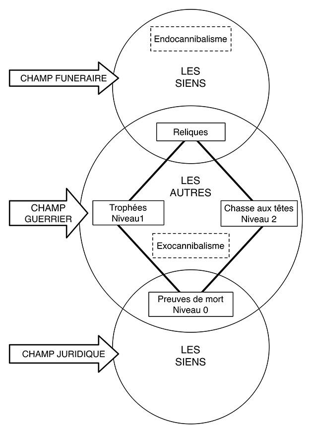 Figure. Sémantique. Relations entre les divers concepts utilisés dans l'interprétation des têtes coupées.