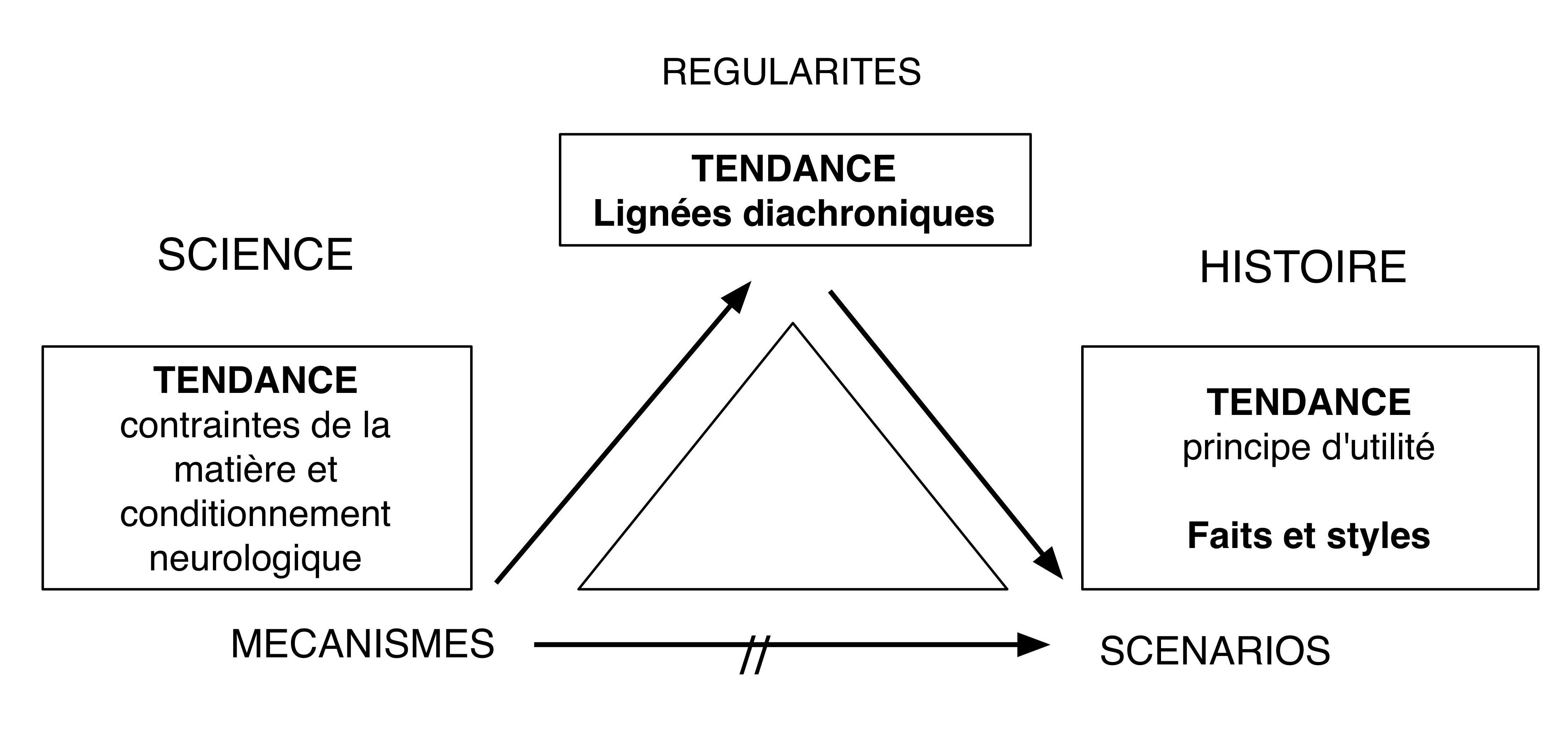 Fig. 10. Positions épistémologiques de la notion de tendance chez Leroi-Gourhan.