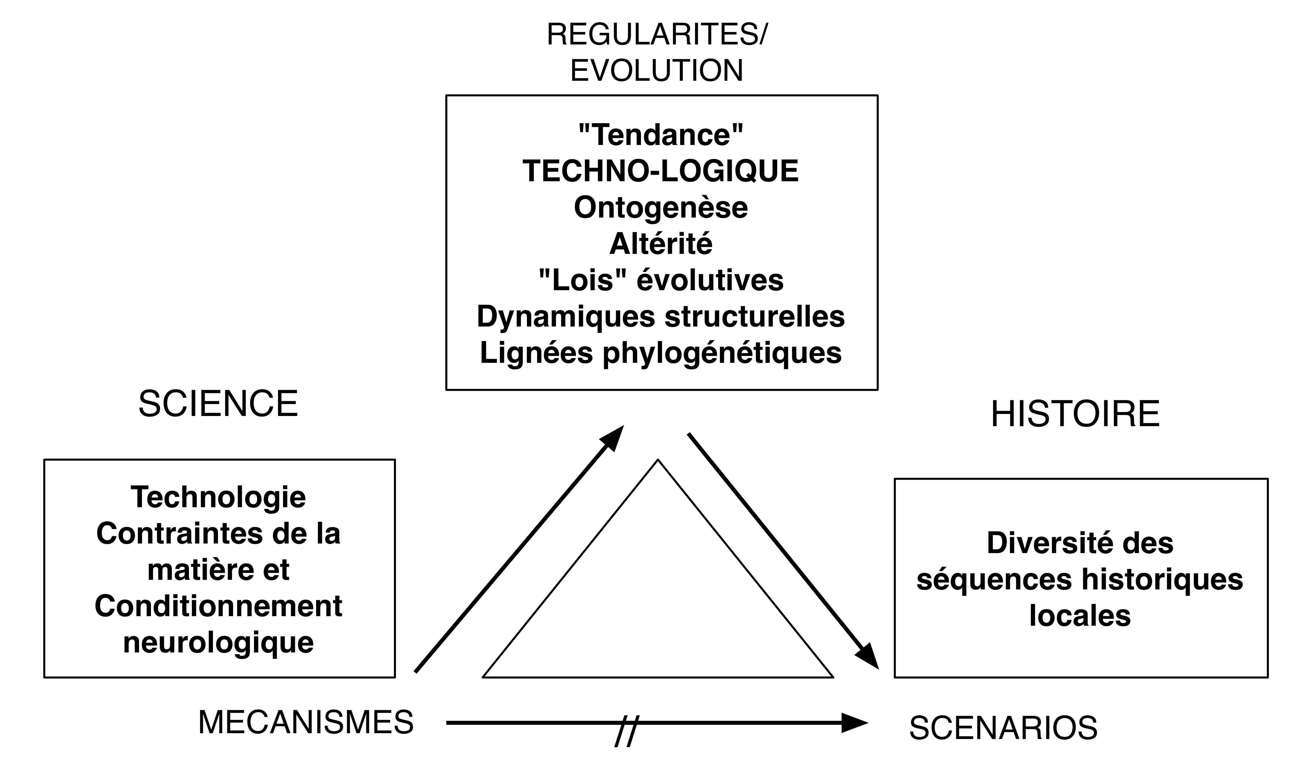 Fig12 Tendance EB