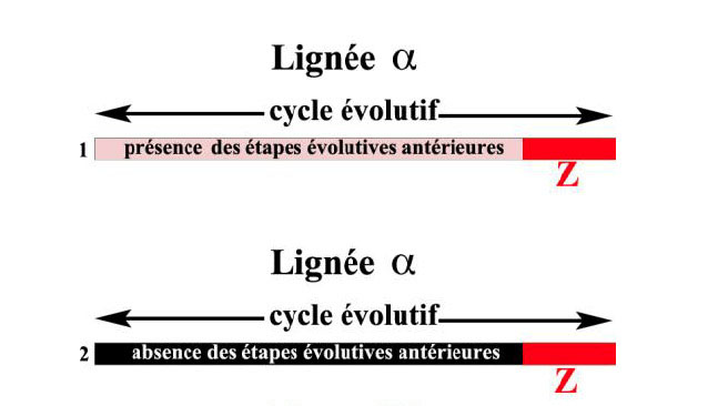 Fig3c