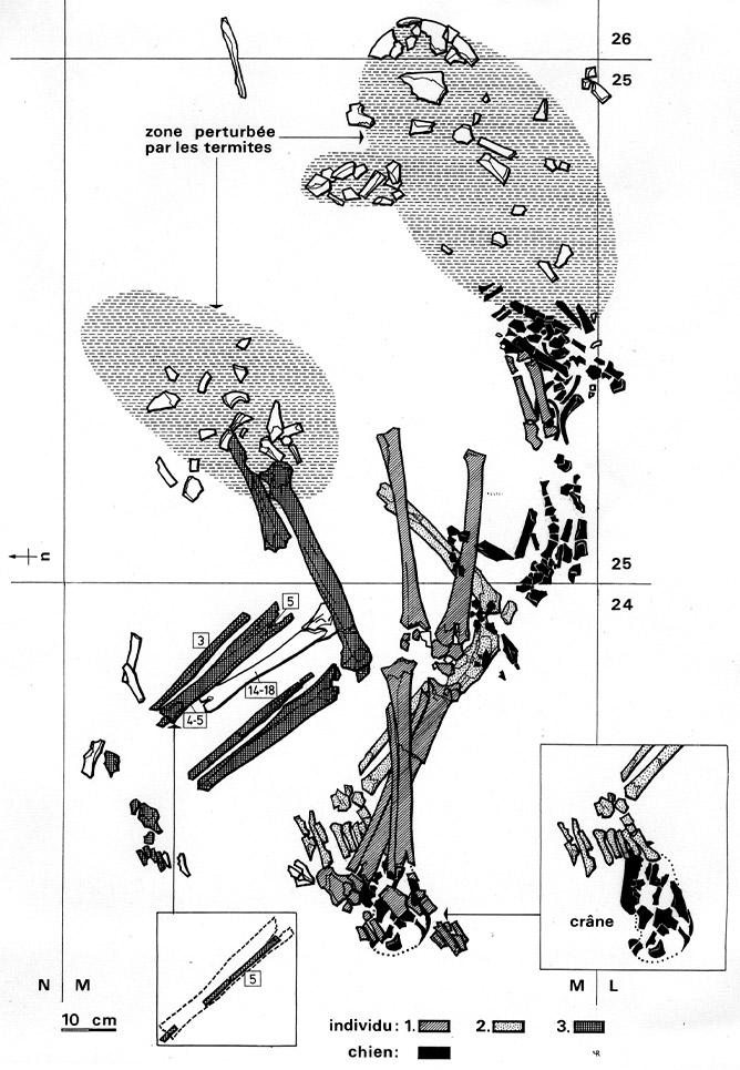 Fig. 2. Santhiou Kohel (Sénégal). Sépulture centrale du tumulus 43. Relevé de la sépulture centrale. En noir : restes du squelette de chien.