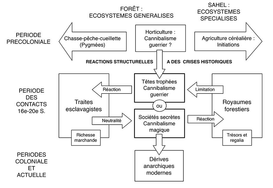 Figure 1. Structure dynamique du cannibalise en Afrique d'après les données de Guille-Escuret.