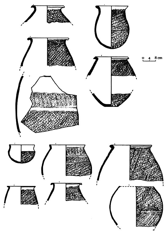 Fig. 2. Un exemple de céramiques.