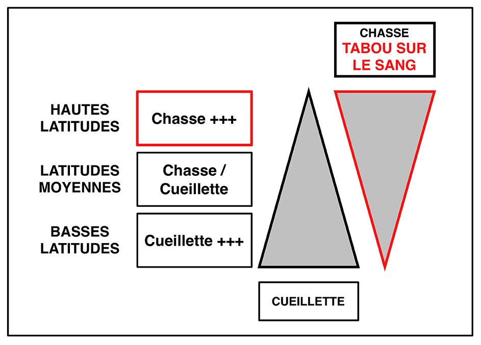 Fig. 2. Importance relative du tabou sur le sang selon les latitudes. Schéma Alain Gallay.
