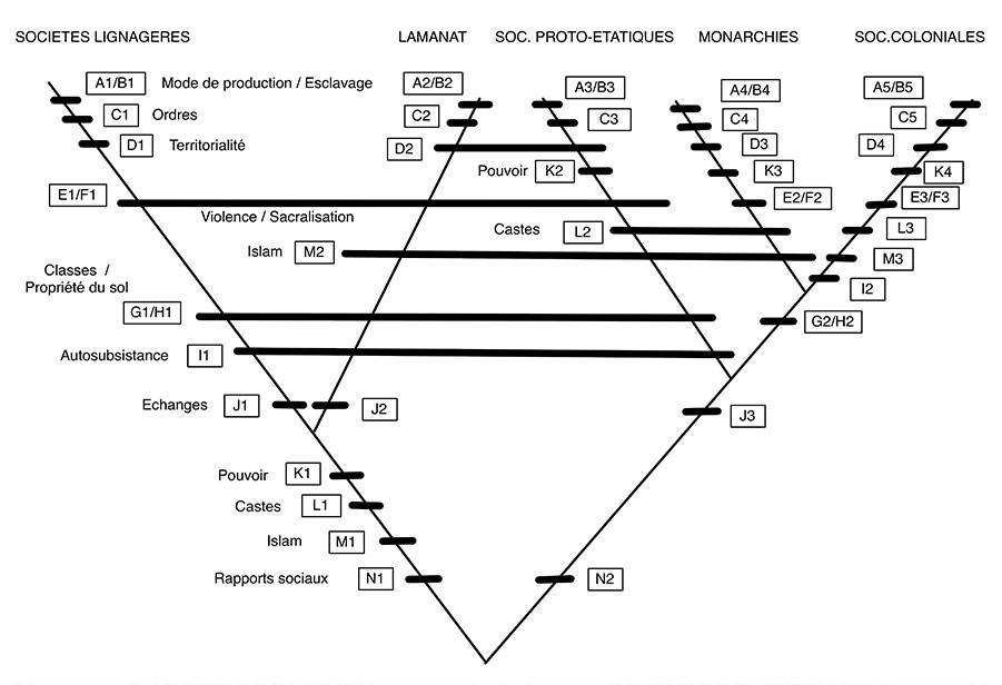 Figure 2 : analyse cladistique des stades de développement de la société wolof.