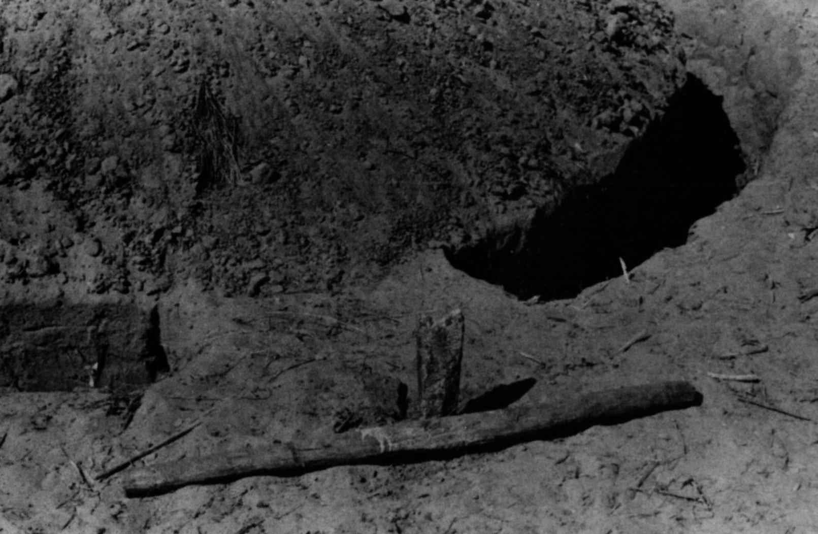 Fig. 10. Le poids des survivances. : une sépulture sérer actuelle entourée d'un fossé et précédée d'un pieu de bois évoquant les pierres frontales des sépultures protohistoriques (D'après Becker, Marin 1982).