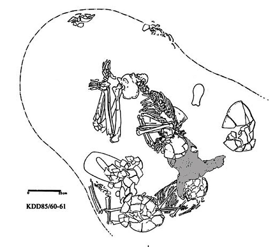 Fig. 16. El-Kadada, cimetière C. Sépulture double associée à un crâne de bovidé (KDD85/60-61) (Reinold 2005, fig. 1)