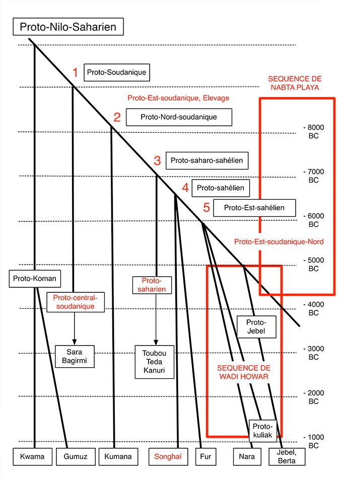 Fig. 2. Arbre phylogénétique du Nilo-saharien selon Ehret 1993/1995 par rapport aux séquences archéologiques de Nabta Playa et du Wadi Howar. Les dénominations de familles en rouge sont celles de Rilly. Schéma simplifié Alain Gallay.