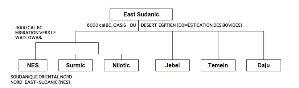 Fig.3. Développement du Soudanique oriental selon Rilly 2009 (pour une vue légèrement différente voir Dimmendaal 2007).