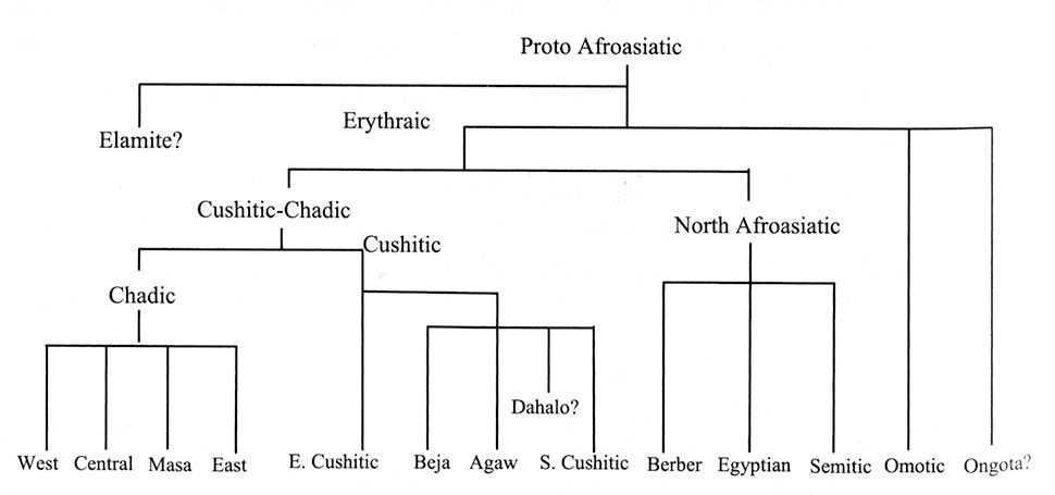 Fig. 8. Classement des langues afro-asiatiques selon Blench 2006, fig. 4.7.