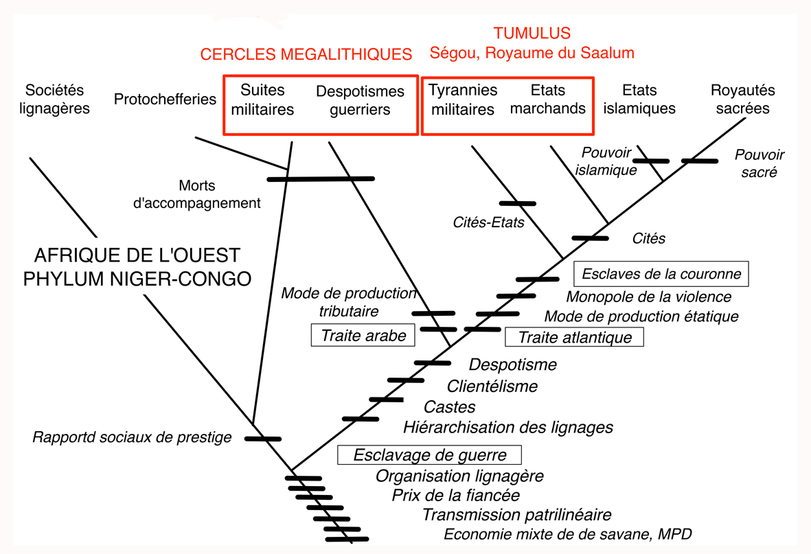 Fig11 Clades_Sénégambie
