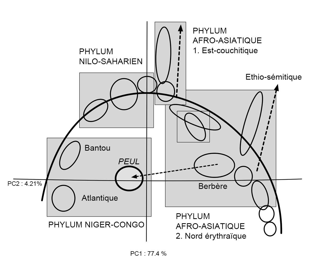 Fig14 GénétiqueSahel2X