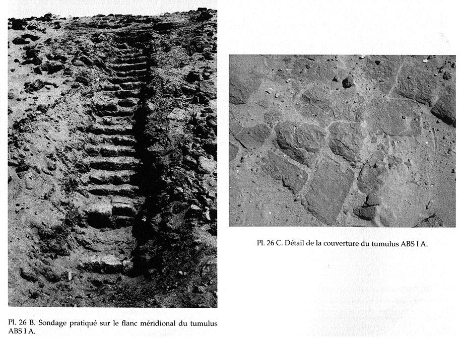 Fig. 7. Abou Sofyan. Construction de briques du tumulus ABS IA.