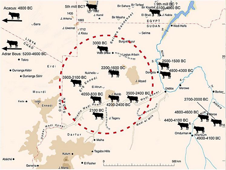 Fig. 4. Dates des premiers bovidés domestiques das la région du Wadi Howar (http://chaz.org/Courses/Nile/Predynastic_Egypt.html).