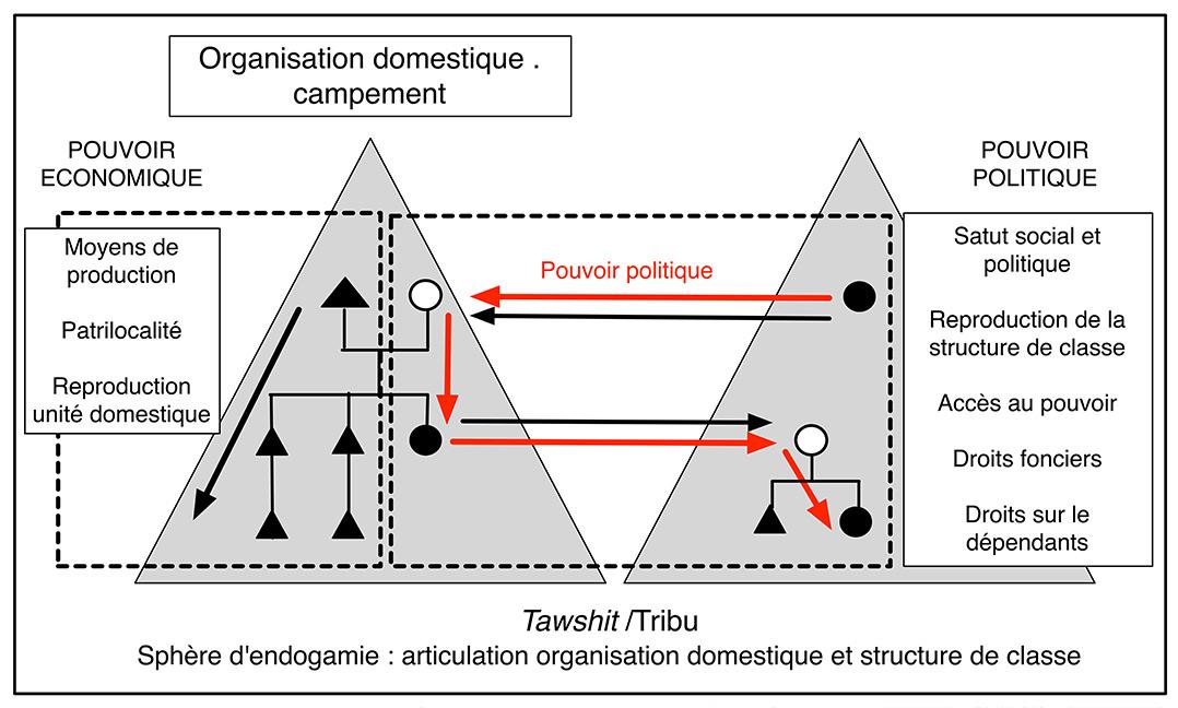 Fig. 5. Articulation des prérogatives économiques des lignées masculines et des prérogatives politiques des lignées féminines évitant une concentration du pouvoir politique dans les mains d'une lignée masculine particulière au sein de la tribu.