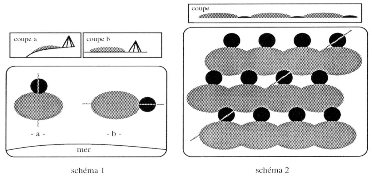 Fig. 3. Processus de formation des amas coquilliers dans les camps yagan (en noir l'habitation, en gris l'amas coquiller). Schéma 1 : sites temporaires. Schéma 2 : site de base avec répétition du schéma 1. D'après Legoupil 1995, fig. 7.