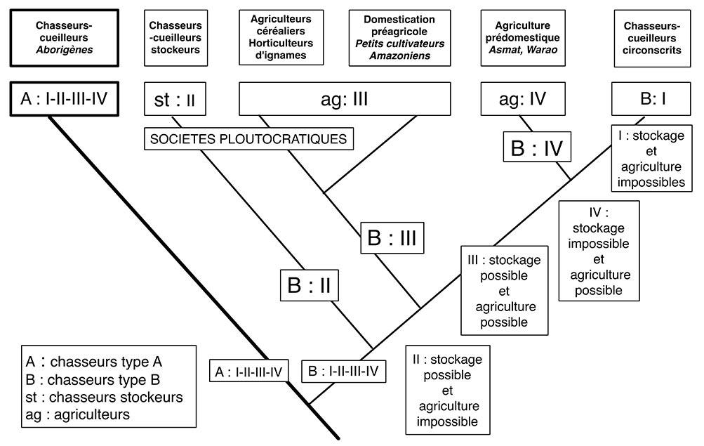 Fig. 13. Un schéma rendant compte des transformations des sociétés humaines depuis le Pleistocène (Schéma A. Gallay).