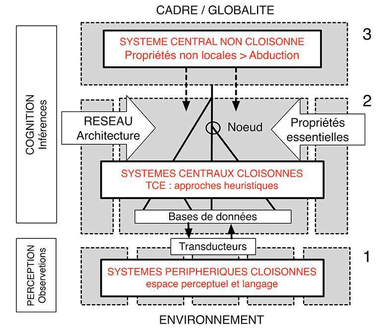 Fig. 1. Structure cognitive synthétique de l'activité globale du cerveau intégrant les données de Fodor de 1983 et 2000. Le niveau 2 des systèmes centraux cloisonnés correspond à la TCE sensu stricto. Schéma A. Gallay.