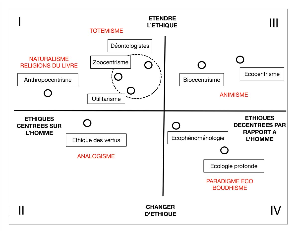 Ecologismes