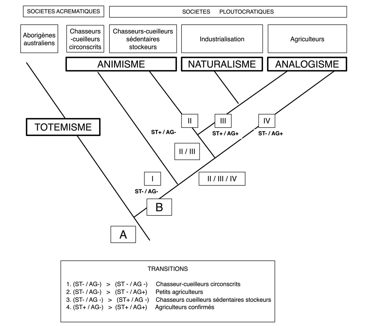 Fig.3. Insertion des ontologies retenues par Philiippe Descola dans un schéma cladistique des divers types de sociétés.