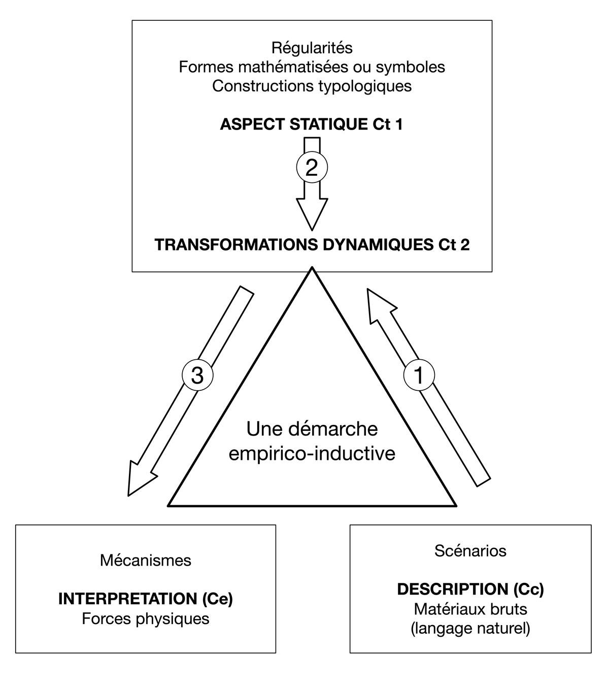 Fig. 4. Sens de la démarche interprétative de D'Arcy Thomson. On distingue une première approche purement descriptive/Cc), puis une phase interprétative permettant de distinguer des aspects statique et des transformations dynamiques (Ct). L'interprétation se situe au niveau des forces physiques responsables des formes observées (Ce). © Gallay.