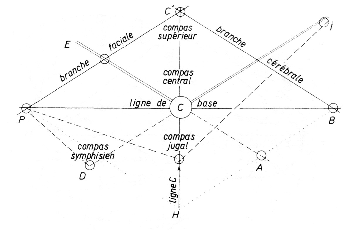 Fig. 8. Nomenclature des lignes de construction. Elles sont figurées ici suivant la convention adoptée pour toutes les figures. Le tracé de suspension est un trait simple, le tracé de traction en tiret, le tracé d'appui en trait double. Le centre C, par commodité graphique, sera figuré par un cercle. (LG. Fig. 3).
