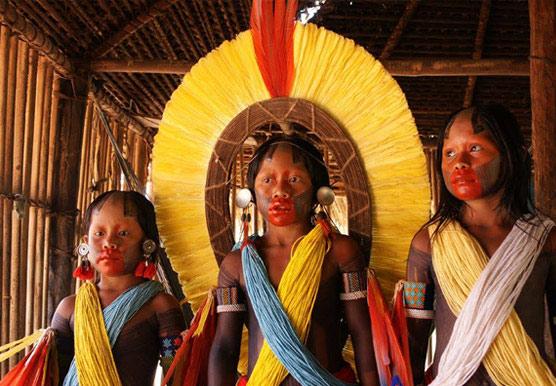 Parure chez les Indiens Kayapo. http://www.butterflycircles.com/en/kayapo/