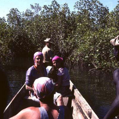 Casamance : pêche en mangrove